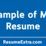 Example of Mini Resume