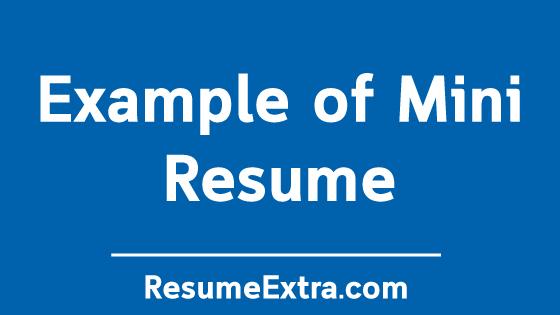 Example of Mini Resume