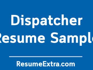 Professional Dispatcher Resume Example