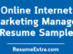 Online Internet Marketing Manager Resume Sample