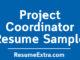 Ideal Project Coordinator Resume Sample
