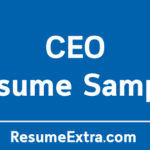 CEO Resume Sample, Job Description and Required Skills
