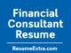 Financial Consultant Resume Sample