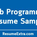 Web Programmer Resume Sample