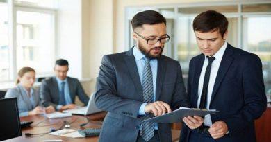 Sales consultant resume/cv sample