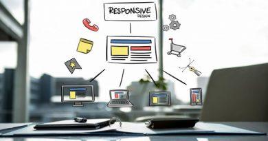 Web programmer resume/cv sample