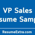 Professional VP Sales Resume Sample
