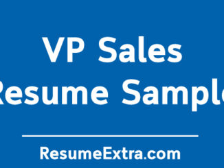 VP Sales Resume Sample