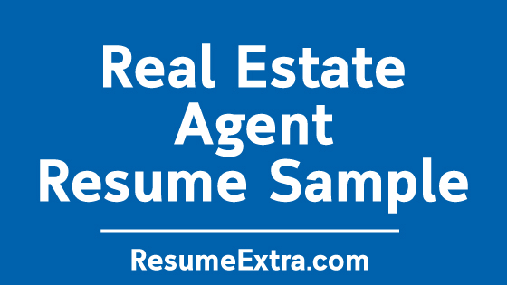 Real Estate Agent Resume No Experience Resumeextra