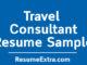 Travel Consultant Resume Sample