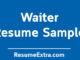 A Sample of Waiter Resume