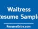 Waitress Resume Sample
