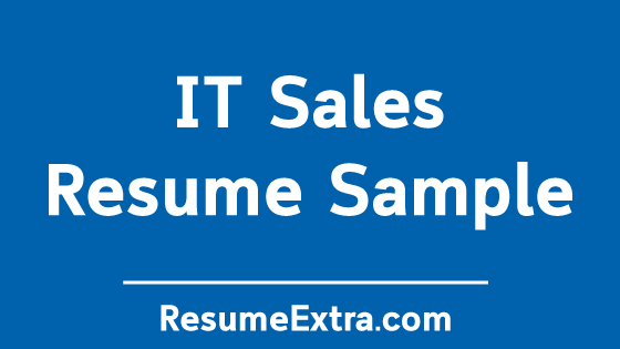 IT Sales Resume Sample