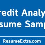 Credit Analyst Resume Sample
