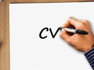 resume writing service by professional resume writers