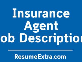 Insurance Agent Job Description Sample
