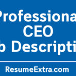 Professional CEO Job Description Sample