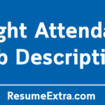 Flight Attendant Job Description Sample